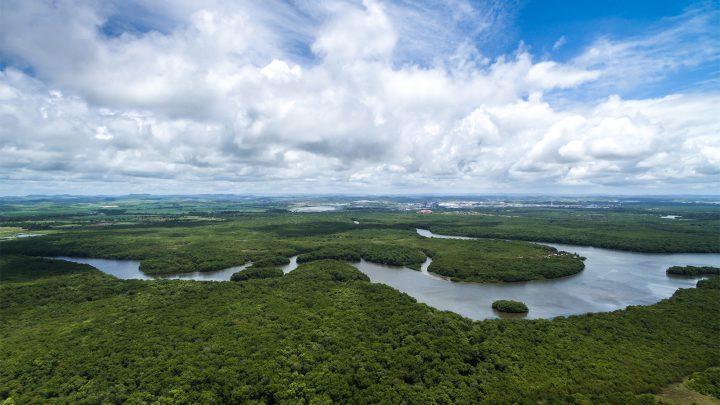 Najdłuższe rzeki świata: Nil czy Amazonka?